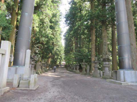 fujiyoshida_oshi31