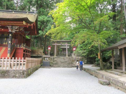 fujiyoshida_oshi44
