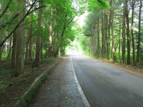 mt_fuji_yoshida_trail008