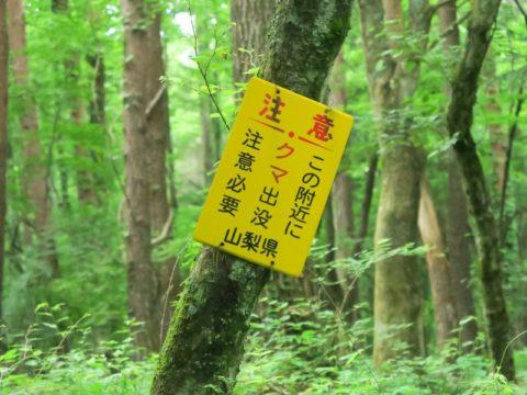 mt_fuji_yoshida_trail015