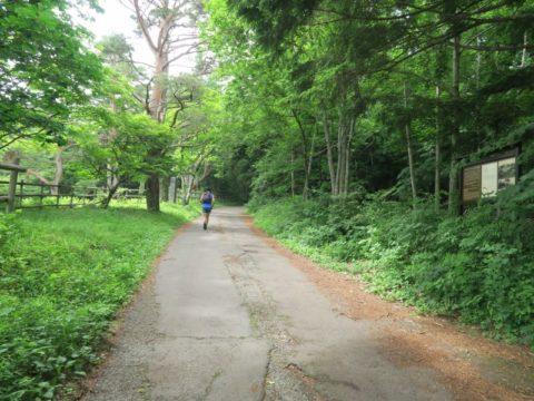 mt_fuji_yoshida_trail025