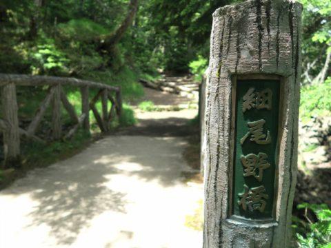 mt_fuji_yoshida_trail051