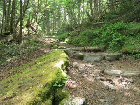 mt_fuji_yoshida_trail052