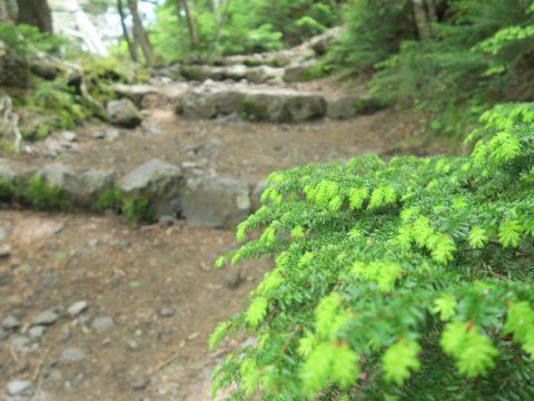 mt_fuji_yoshida_trail061