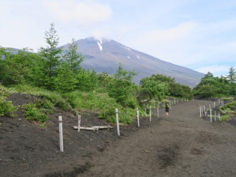 mt_fuji_gotemba_trail015