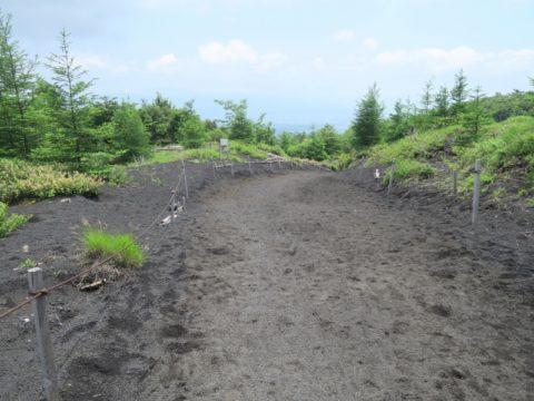 mt_fuji_gotemba_trail184