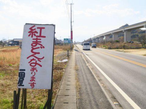 ikkokuya06