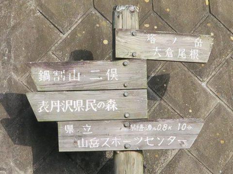 鍋割山大倉ルート