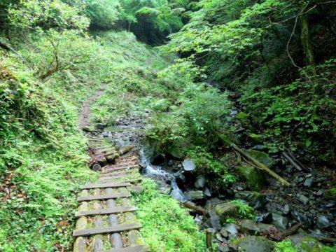 鍋割山黒竜の滝