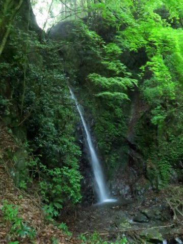 鍋割山西山林道黒竜の滝
