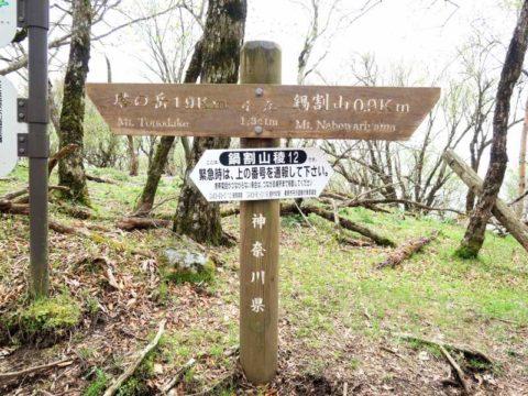 鍋割山稜12(小丸)