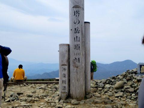 塔ノ岳山頂標識
