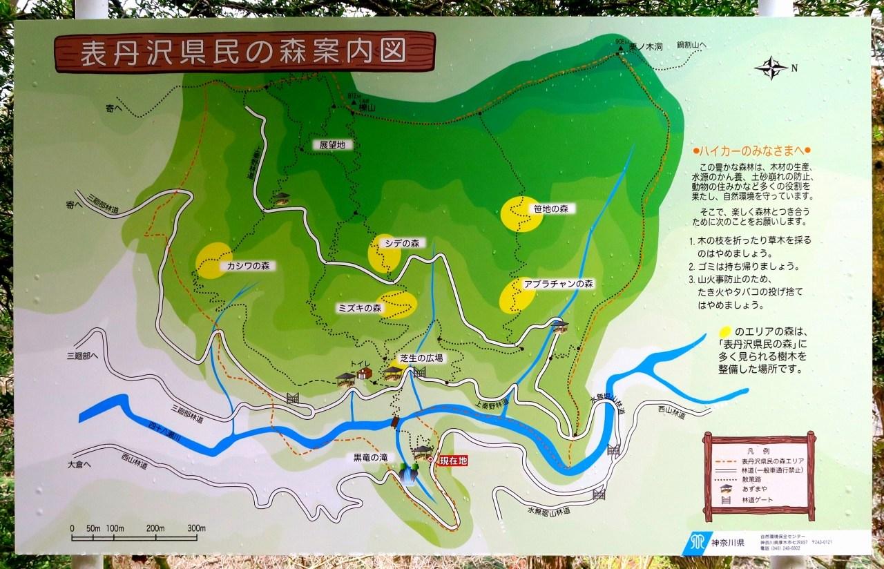 表丹沢県民の森地図