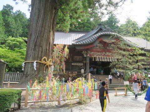 fujiyoshida_oshi37