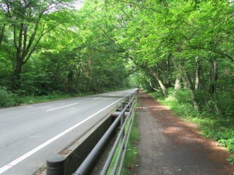 mt_fuji_yoshida_trail013