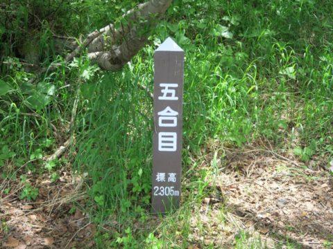 mt_fuji_yoshida_trail069
