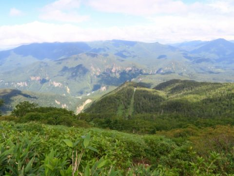 黒岳から層雲峡