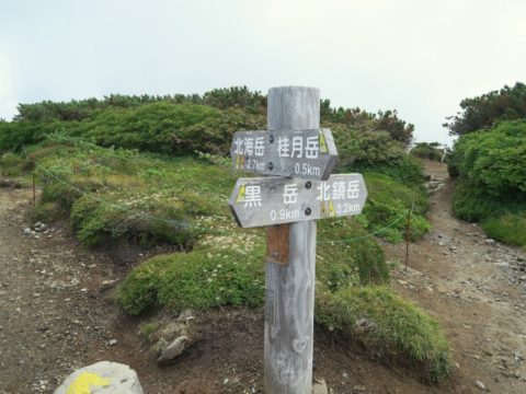 黒岳石室十字分岐