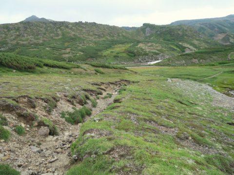 黒岳石室から北海岳への縦走路