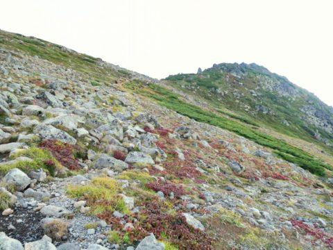 白雲岳への縦走路