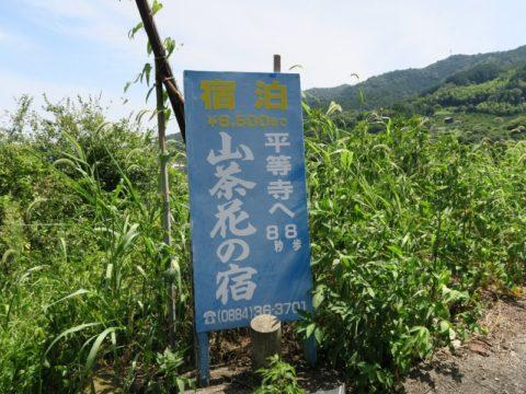 民宿山茶花の看板