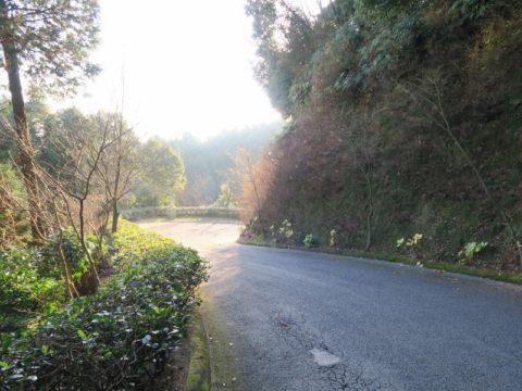 仙遊寺の坂