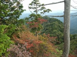 両神山頂上紅葉