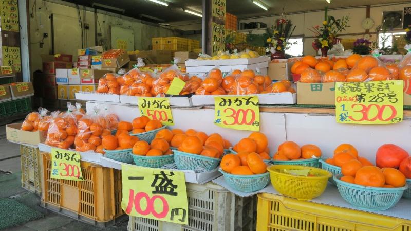 愛媛の柑橘直売所「一国屋」